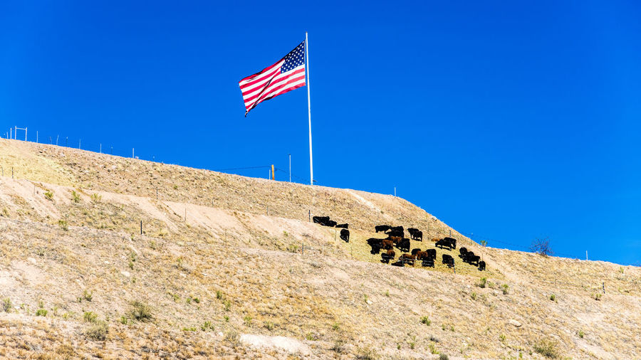 Low Angle View Of Flag On Hill Against Clear Blue Sky