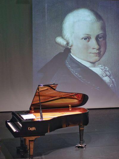 Pianoforte a coda - Grand piano Musician Music Musical Instrument Arts Culture And Entertainment Females Portrait Piano Classical Concert Classical Music Grand Piano