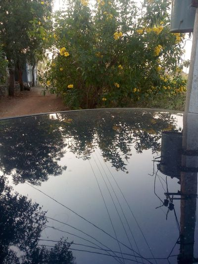 Reflection_collection Smartphone Photography Eye Em Friends From India With Love...
