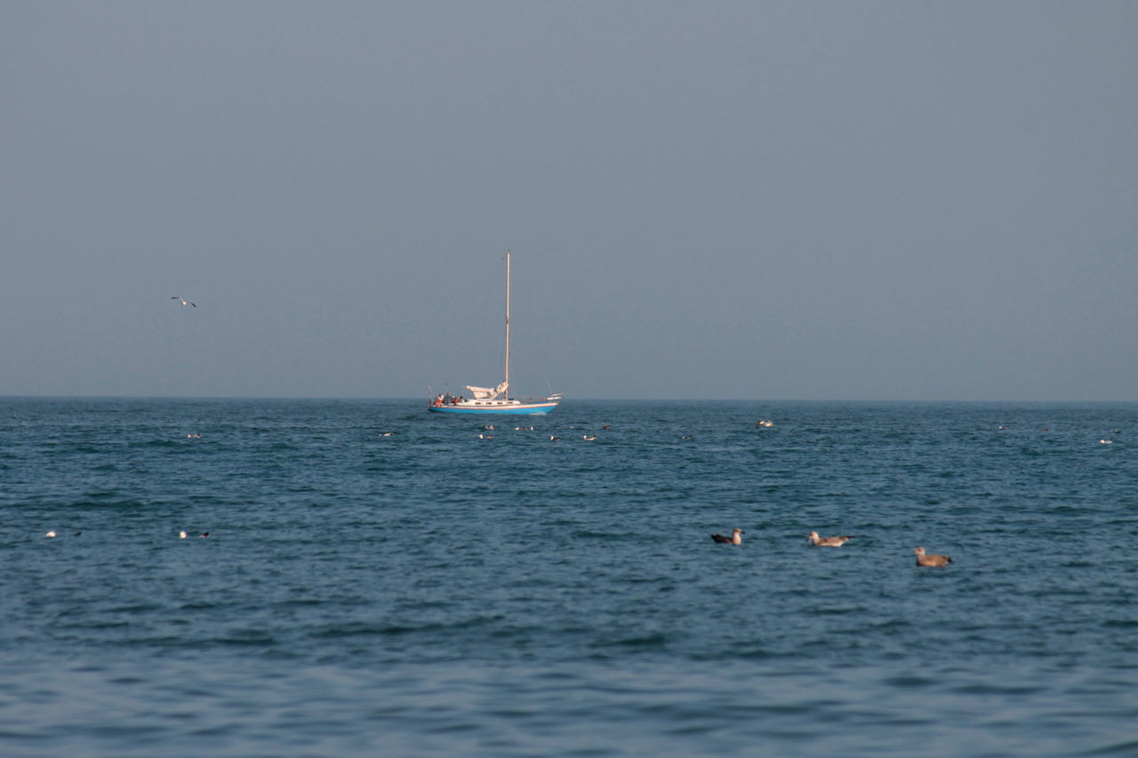 sea, water, sky, nautical vessel, horizon over water, horizon, waterfront, scenics - nature, transportation, beauty in nature, clear sky, nature, mode of transportation, copy space, day, non-urban scene, outdoors, no people, sailing, sailboat, marine
