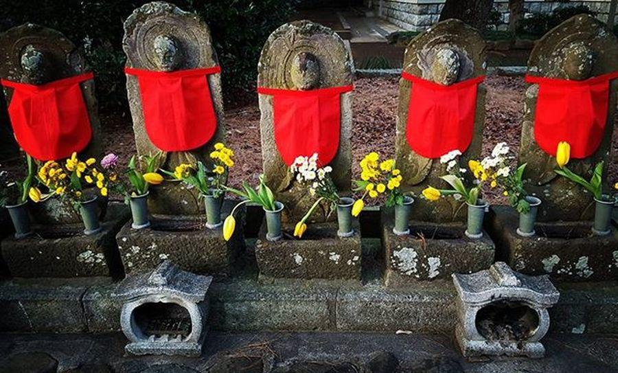 Jizo statues at sampojii Jizo Jizou Buddhism Bodhisattva