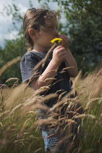 Girl holding dandelion flower in a field