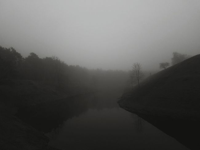 Black And White River View Fog In The Trees Evening Photography Autumn Perspectives On Nature Black And White Friday Visual Creativity