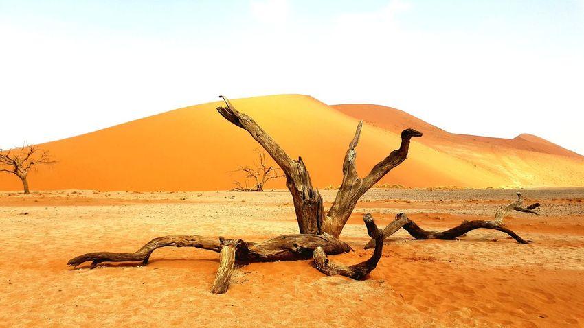 Namibia Sossusvlei Desert Sand