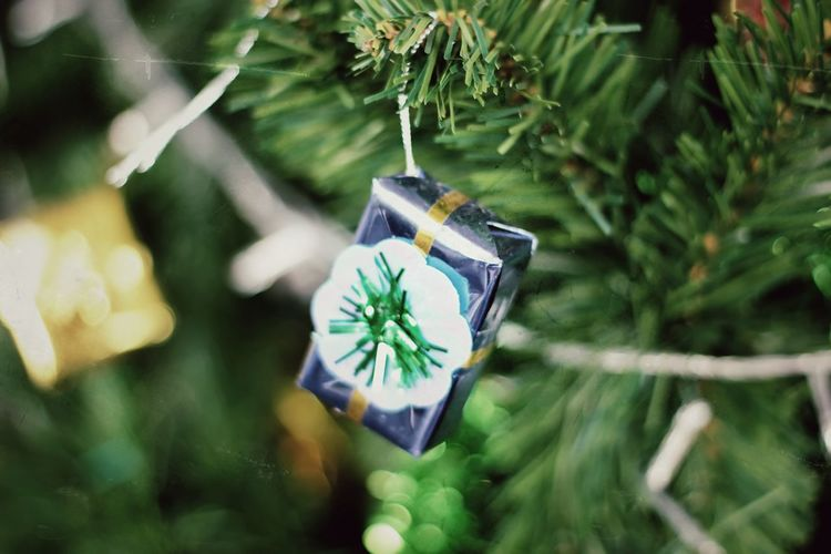 High angle view of gift box on christmas tree
