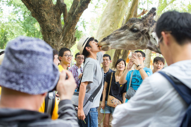 Feeding  Feeding Animals Fun Holiday KISS ME IF YOU CAN Tourist Adult Animal Themes Day Enjoying Life Girrafe  Kissing Medium Group Of People Men Nature Outdoors People Real People Smiling Tourism Tree Young Adult Zoology