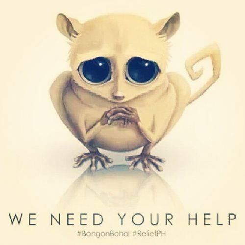All my Igasia Igcdo Igph Instagram friends please let us help bohol and also cebu.... Please extend help helpbohol helpcebu