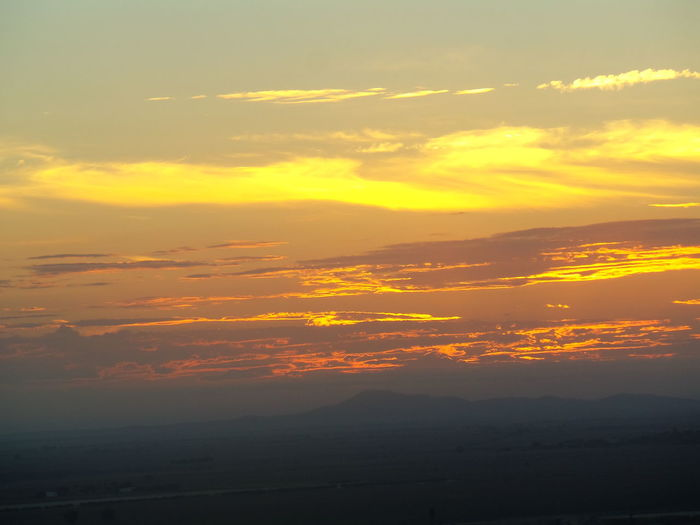 Goldskies Sky