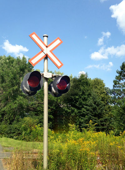 Railroad stop lights in the country side. Railroad Track Railroad Lights Day Guidance Low Angle View Nature No People Outdoors Railroad In The Country Railroad Stop Lights Railway Signal Red Sky Tree