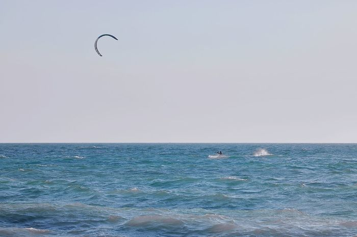 kiteboarding Water Flying Bird Sea Beach Wave Clear Sky Mid-air Motion Sunset Kiteboarding Water Sport Surfboard Surfer Paragliding Parachute Extreme Sports Windsurfing Kite - Toy Surfing Parasailing The Great Outdoors - 2018 EyeEm Awards The Traveler - 2018 EyeEm Awards My Best Travel Photo