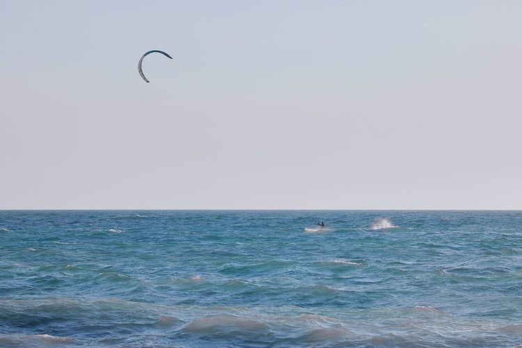 kiteboarding Water Flying Bird Sea Beach Wave Clear Sky Mid-air Motion Sunset Kiteboarding Water Sport Surfboard Surfer Paragliding Parachute Extreme Sports Windsurfing Kite - Toy Surfing Parasailing The Great Outdoors - 2018 EyeEm Awards The Traveler - 2018 EyeEm Awards My Best Travel Photo 17.62°