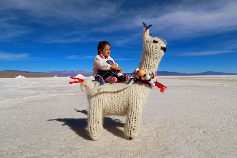 My daughter in Salinas Grandes, Jujuy Aboriginal Coya Doll Inca Jujuy Province Landascape Norte Argentino Salar Salinas Salt Travel Aboriginal Art Argentina Argentine Child Girl Jujuy, Argentina Kid Llama North Salinas Grandes Sky Tourist Atraction Toy Travel Destinations