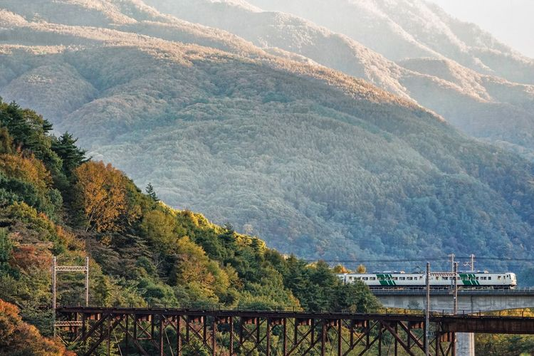 Railroad. 185 Go To Home Train Train Photography Sunset Sunsettime Mountain Railway Bridge Bridge Plant Tree Nature Beauty In Nature No People Built Structure Landscape Transportation Growth Land