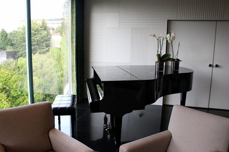 Chair Green Color Growth Interior Views Perspective Piano Plant Reflection Trees Black Close-up Closed Door Day Door Furniture Home Interior Indoors  Interior Design Musical Instrument No People Seat Vase Of Flowers Wall - Building Feature Window Window View