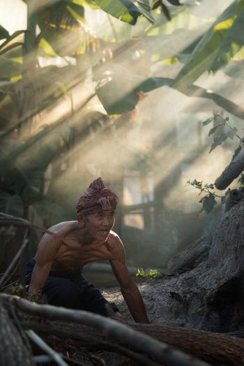 Senior Man Working In Forest