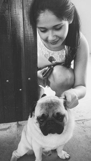 I Love My Dog Babybabybabybaby I Love Dogs A Viajem De Uma Alma