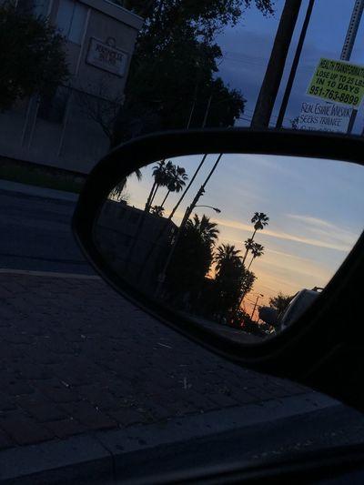 Sunset Rear