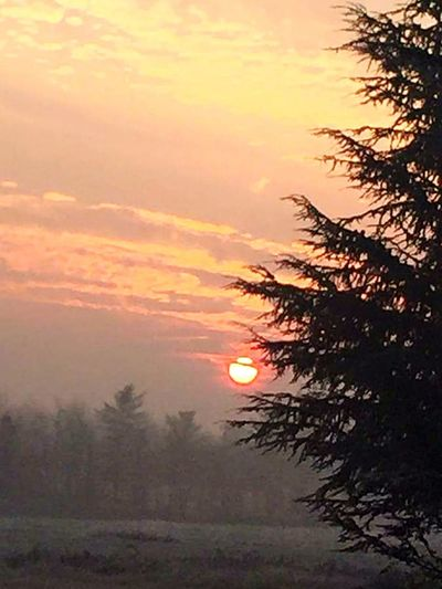 Sunset Nature Beauty In Nature Tranquility Scenics Giornata Spettacolare Con Tramonto Altrettanto Spettacolare Beauty In Nature