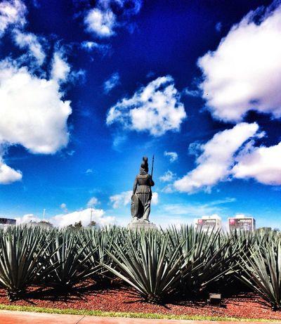 Ella sólo dijo dejare ya este país Clouds And Sky Arquitecture Guadalajara
