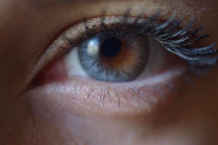 Human Eye Human Body Part Eyelash One Person Sensory Perception Eyesight Eyeball Looking At Camera Real People Close-up Portrait Iris - Eye Indoors  Day People