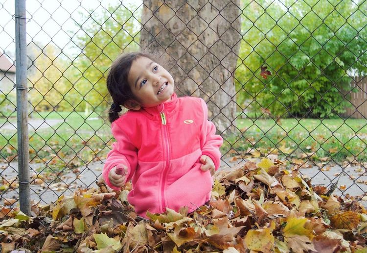Girl Fence Childhood Outdoors Child Pink Color Day Nature Sitting Innocence Detroit Playing Autumn Happiness Smiling