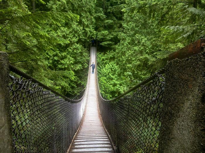 Mid Distance Of Man Walking On Footbridge Against Trees