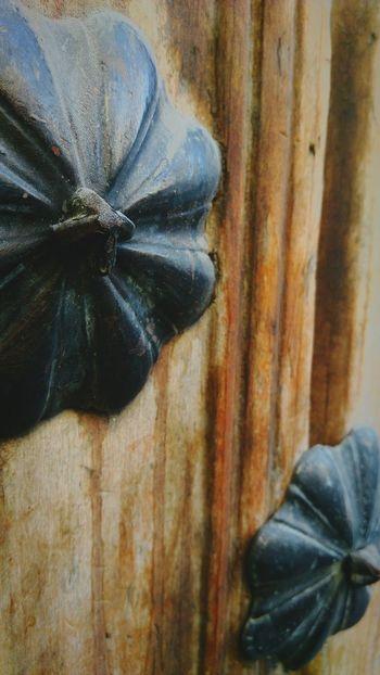 Wood Door Vintage Centro Historico Nopeople Porton Metal