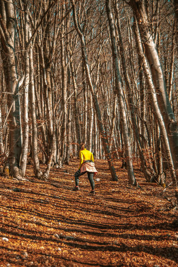 Trees Nature Hike Hiking Trail Womanhiker Outdoor Photography Outdooractivities Tree Full Length Forest Autumn Hiker Leaves Fall Woods Leaf