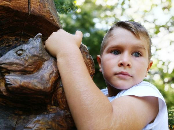 Body Part Boy Child Blue Blue Eyes Cute Cute Kids Cuteboy Cute Boy Tree Silhouette Trees And Nature Tree Art Art Photography Carvings In Wood Carved In Wood Carved Wooden Figure Carefree Outdoors Outdoor Photography Nature