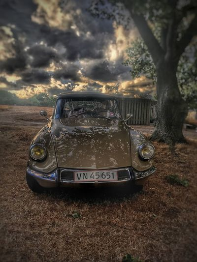 DS Beauty Citroen Retro Oldtimer Classic Car Citroën DS Citroen Retro Ds Citroen Motor Vehicle Land Vehicle No People Outdoors Sunset Vintage Car Mode Of Transportation Retro Styled Car Transportation Nature Single Object Old Nostalgia Tree Cloud - Sky Sky