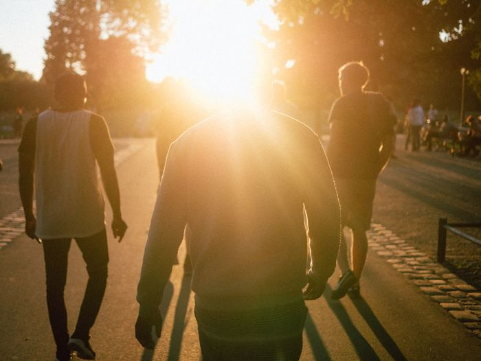 Rear view of people walking in park during sunset