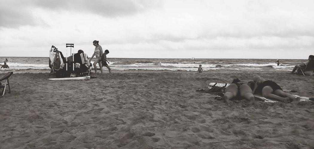 Live Sea Beach
