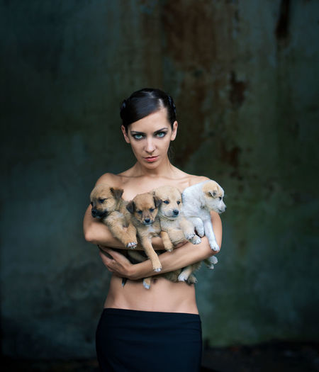 beautiful girl protects four small puppies Care Hugging Adult Animal Animal Themes Beauty Dog Dog Love Environment Fashion Front View Holding Looking At Camera One Person Pet Portrait Protect Animals Protection Standing Strongwoman Three Quarter Length Vertebrate Women Young Adult Young Women The Portraitist - 2018 EyeEm Awards