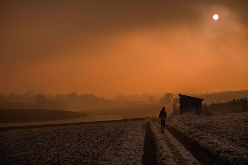 Foggy sunset Real People Nature Beauty In Nature Outdoors Rural Scene Landscape One Person Scenics Sky Day Foggy Foggy Morning EyeEm Best Shots Light And Shadow Newcomer  Canonphotography Eyeem New Talent EyeEm Gallery Nature Sunset Misty Misty Evening Walking Around EyeEmNewHere
