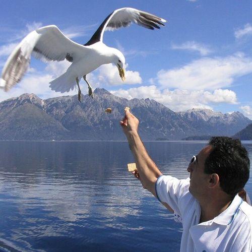sólo un momento ....feliz martes! !!! EyeEm Best Shots Nature_collection EyeEm Nature Lover Water_collection