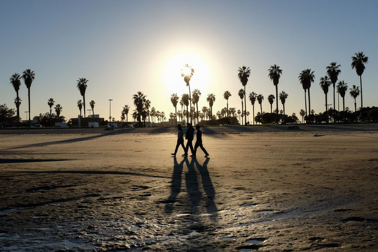 Beach Beauty In Nature Clear Sky Day Full Length Men Nature One Person Outdoors Palm Tree People Real People Sand Shadow Silhouette Sky Sun Sunlight Sunset Tree Capture Tomorrow