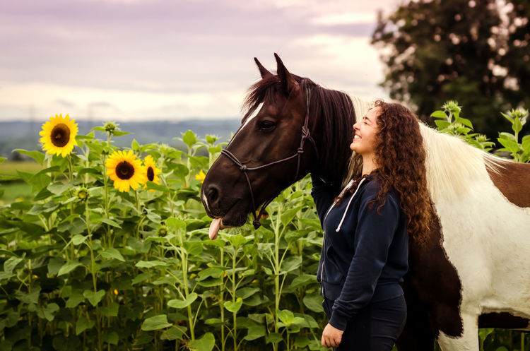 Fun Laughing Pferd Sunflower Animal Themes Beauty In Nature Close-up Day Domestic Animals Field Girl Herbivorous Horse Lila Livestock Mammal Nature One Animal One Person Outdoors Sky Sonnenblume Standing Sunflowers Tree Pet Portraits