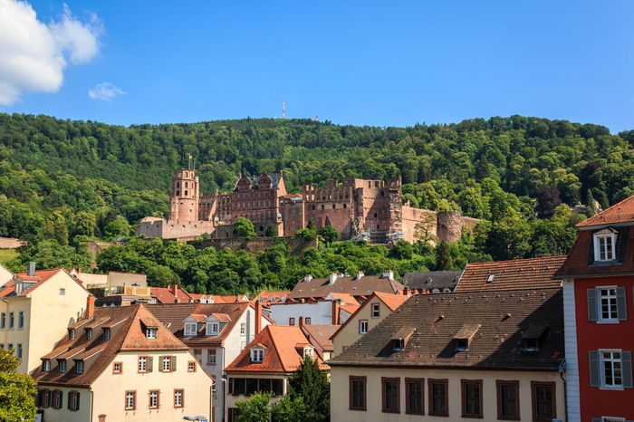 Close up of the Old Bridge on the Heidelberg Castle, Heidelberg, Baden Wuerttemberg, Germany Heidelberg Architecture Building Building Exterior Built Structure City Day Heidelberger Schloss History House Mountain Nature No People Outdoors Place Of Worship Plant Religion Residential District Schlossruine Sky Sunlight The Past Travel Destinations Tree