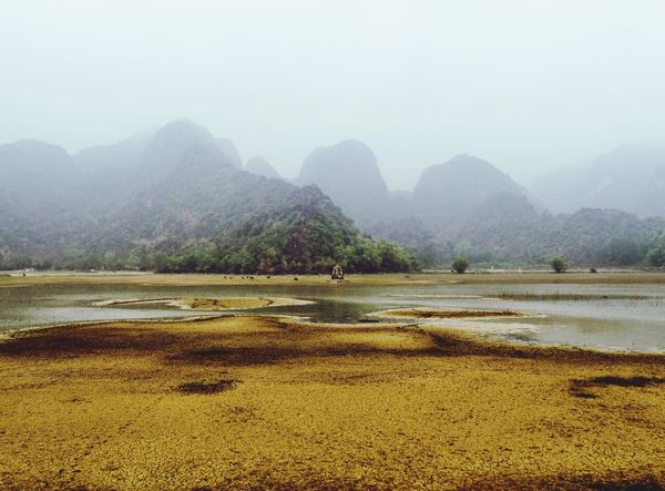 mysterious world Outdoors Mysrerious Fog Mountain Mountainscape Nature Vietnam Paint The Town Yellow
