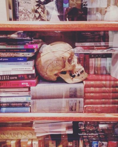 #book #books #bookshelf #photography #Skull Bone  Shelf