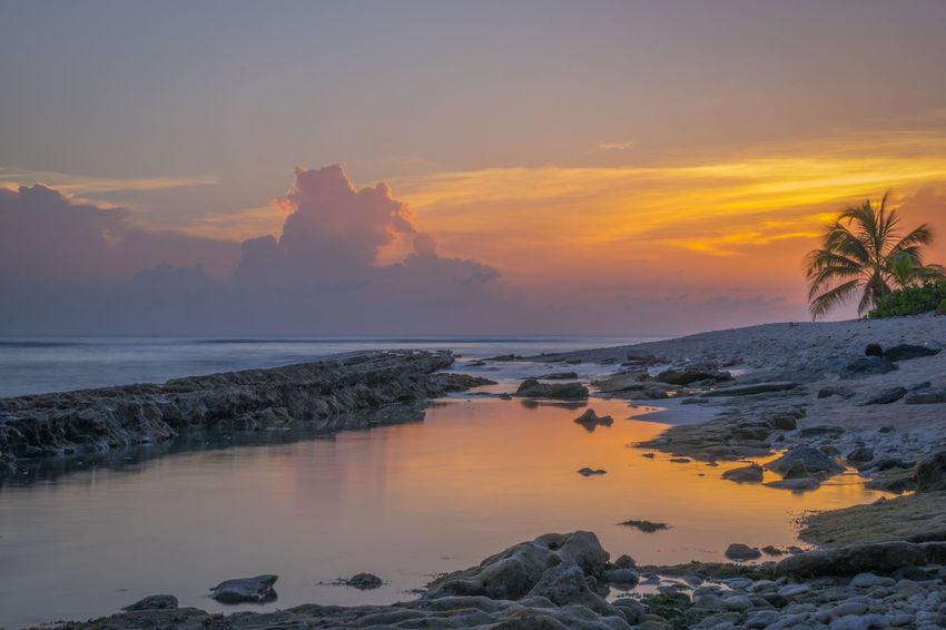 Beach Taking Photos Sunset Landscape