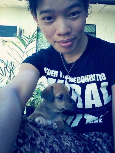 "meet my little buddy ""lexie"".like if u think she's cute.. Doglover Dog Dogoftheday Taking Photos"