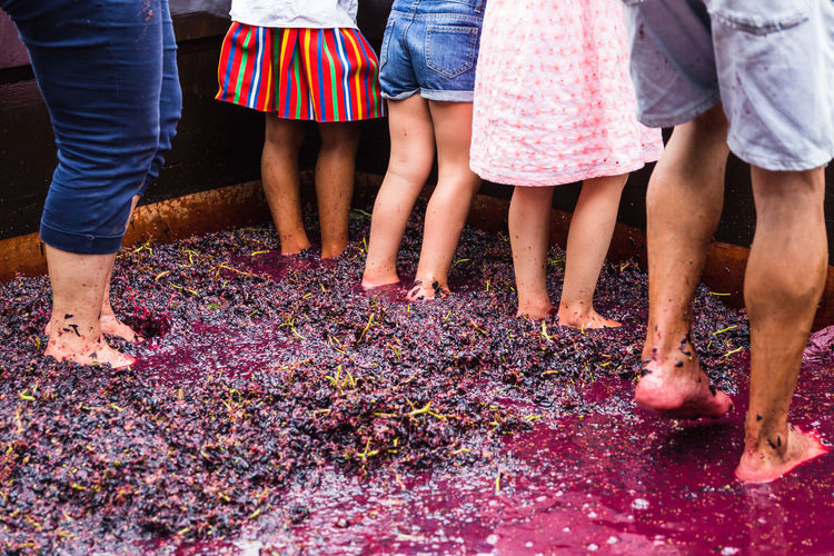 Low section of people jumping on grapes