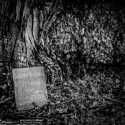 Lost in Eternity Rest In Peace Series Gravestone Graveyard Cemetery