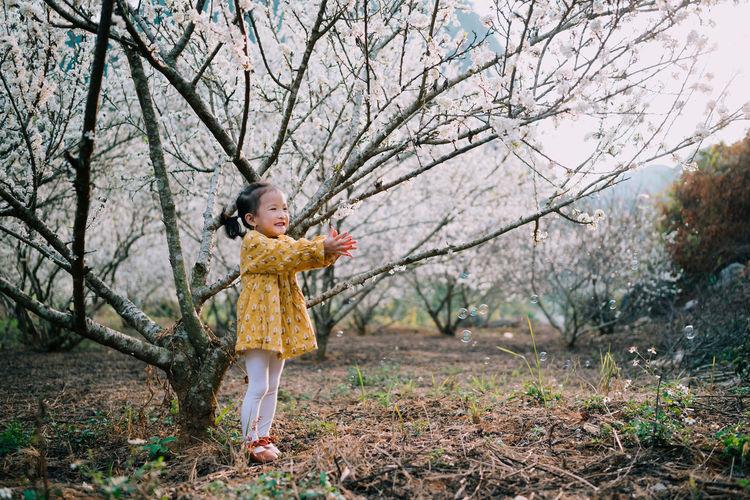 Full length of a cute baby girl in plum blossoms garden