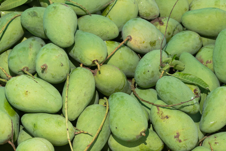 Raw mango Backgrounds Close-up Day Food Food And Drink For Sale Freshness Fruit Green Color Healthy Eating Large Group Of Objects Market Market Stall No People Outdoors Retail