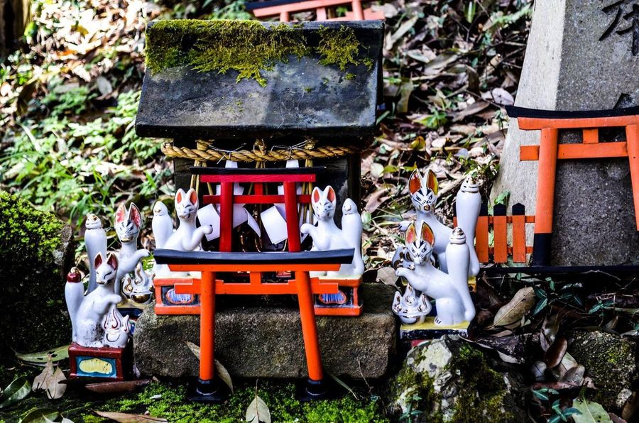 Real People Outdoors Day Spirituality Built Structure Women Architecture Adult People Inari Shrine Inari Fox Whatdoesthefoxsay  Japan