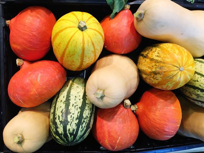 Orange Color Orange Yellow Red Food Shop Decoration Time Of The Year Autumn colors Autumn Vegetable Market Markt Kürbis Choice Pumpkin Large Group Of Objects Market For Sale Variation Squash - Vegetable Indoors