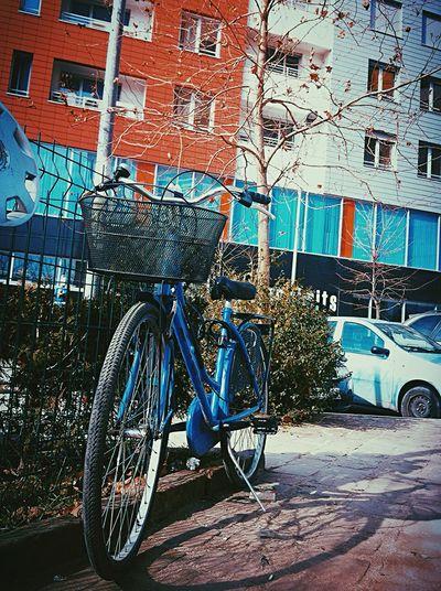 Bike Beautiful EyeEm Gallery EyeEm Albania Albania Tirana Bicycle Everyday Joy Taking Pictures