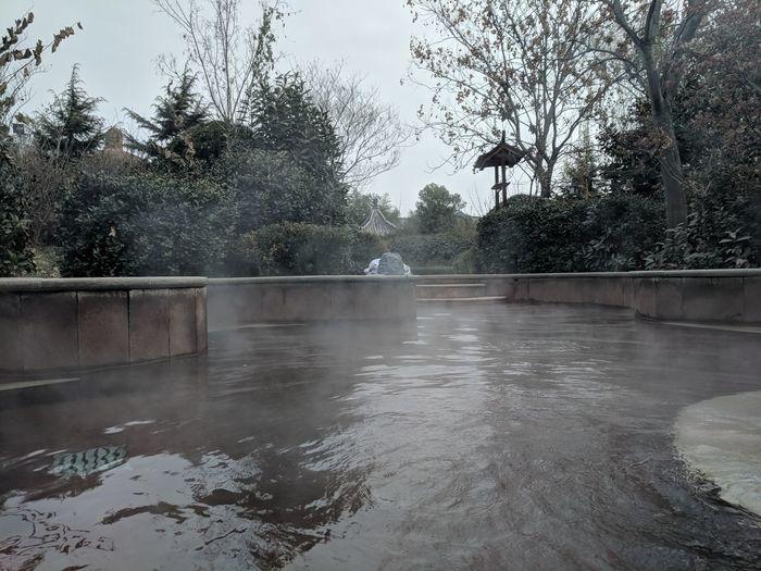 温泉 Tree Water Reflection No People Wet Outdoors Day